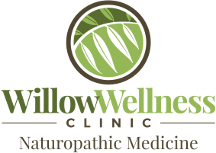 Willowwellness logo 1b transparent 3be527b7b73e23ba6317071cbceb13198a1dff5075c4a00c4d56d1113cf95a8a