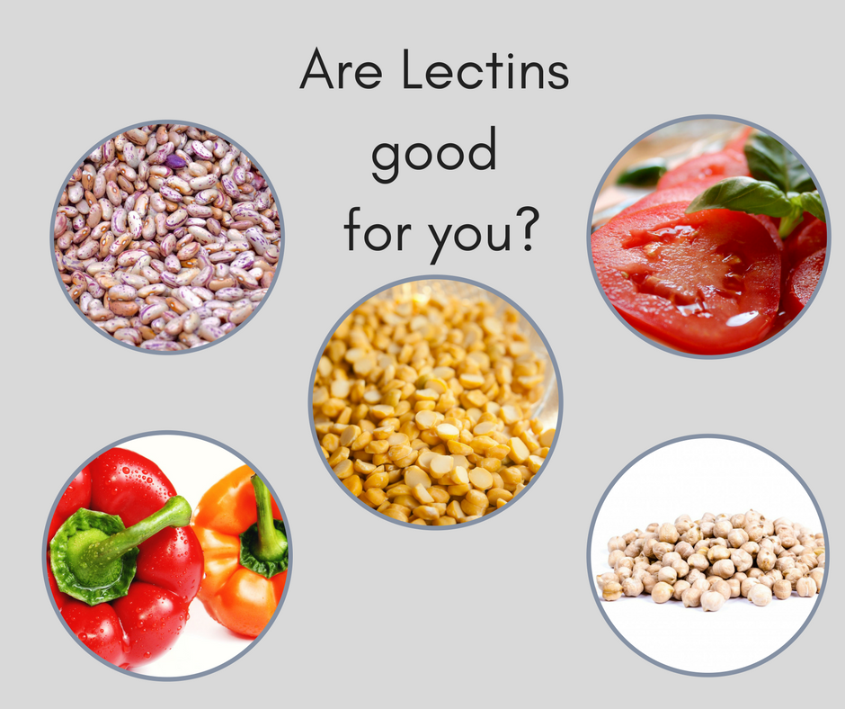 Lectins - What Are They? Love Them or Leave Them?
